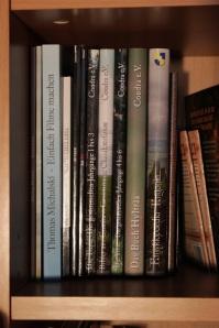 Das Buch Hylträa inmitten der anderen Bände