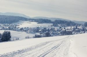 Blick über eine Loipe hinweg zum Dorf