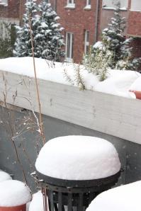 Jetzt echt? Neuerlicher Wintereinbruch im März?