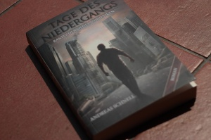 """Andreas Schnells """"Tage des Niedergangs"""""""