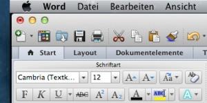 Der Schriftgrad unter MS Word 2011: Hier liegt er bei 12. Aber 12 was?