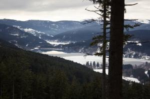Der Schwarzwald – das perfekte Gebiet um ein wenig mit sich selbst zu wandern