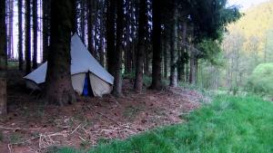 """Meine """"Schwitzhütte"""" im Wald"""
